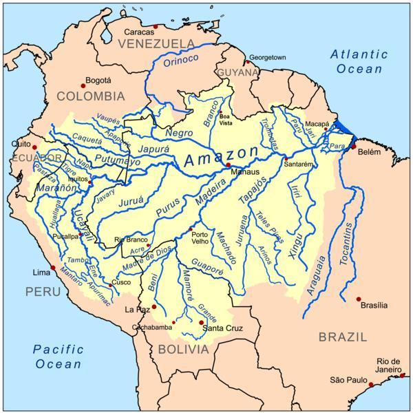 Brazylia - Manaus - Amazonka