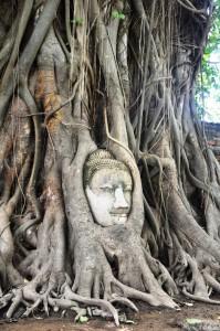 Ayutthaya temples